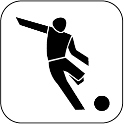 icon fussball S W